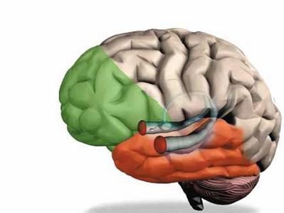 额叶癫痫的发作类型及特点